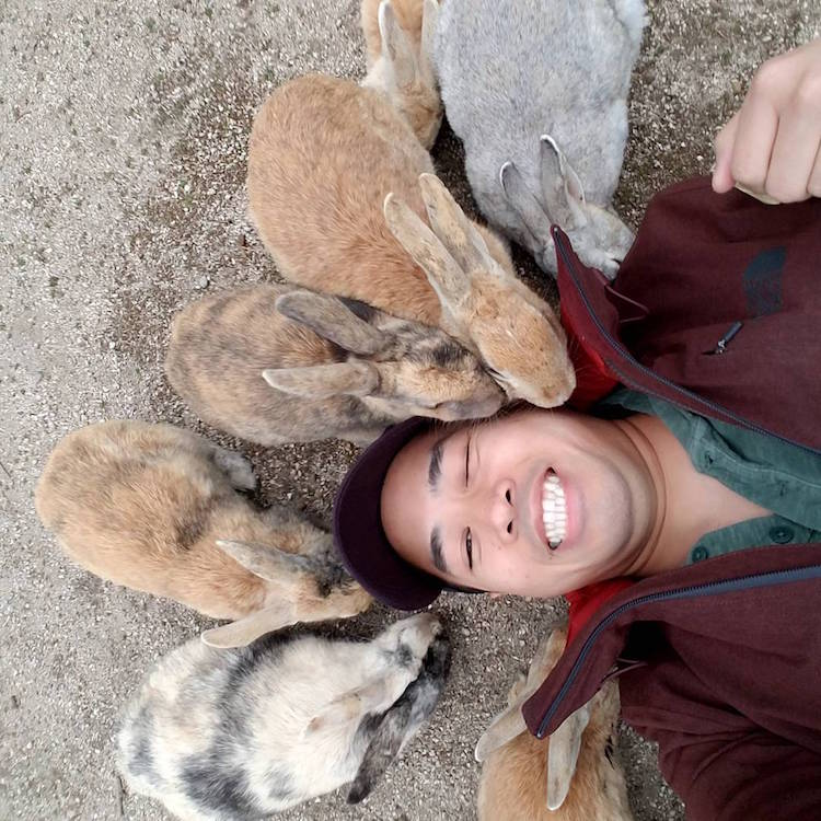 okunoshima-rabbit-island-japan-8