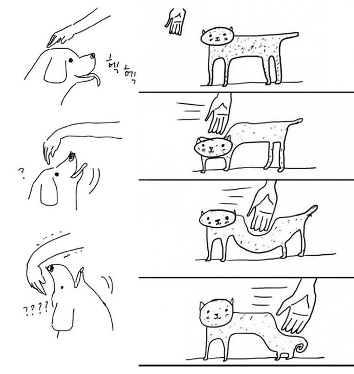 59cc991399ad9-funny-cats-vs-dogs-comics-252-59c8faf60b8aa__700