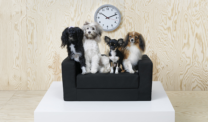 Ikea_dogs_cats_pets_product_design_its_nice_that_li2
