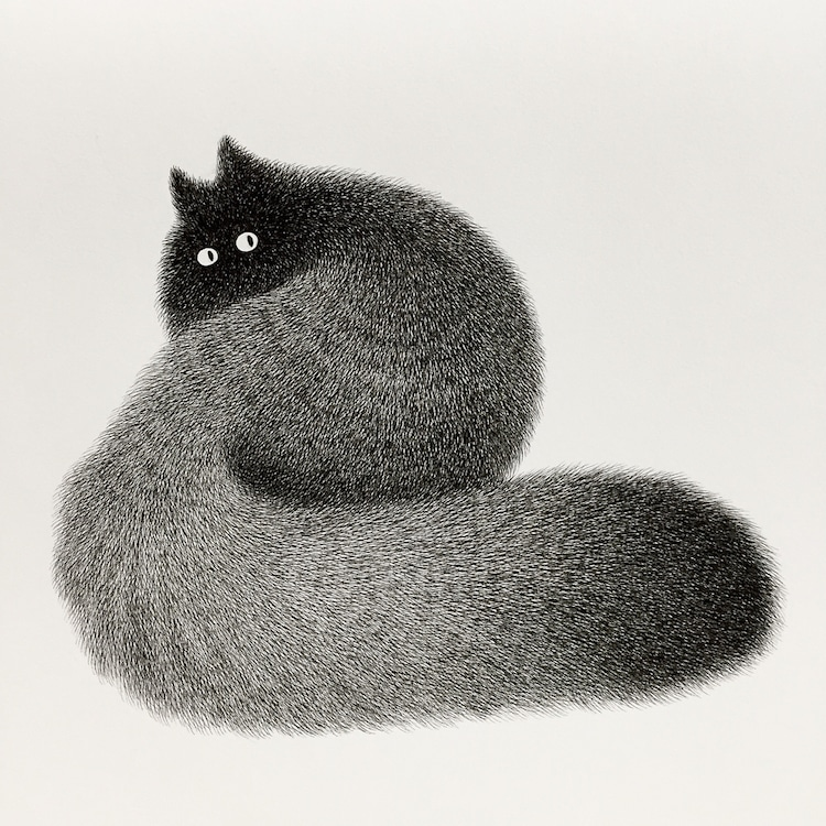 fluffy-black-cat-ink-drawings-kamwei-fong-4