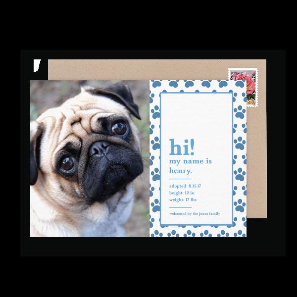 blue photo puppy announcement