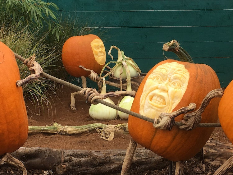 pumpkin-carving-ideas-2