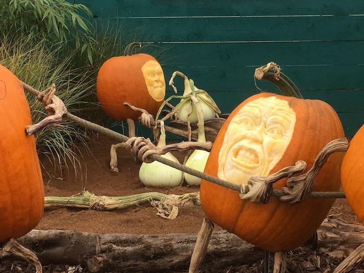 pumpkin-carving-ideas-2