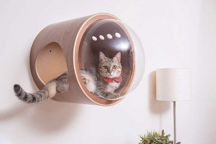 spaceship-cat-bed-1